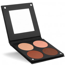 Palette 4 Powder Blushes 3D