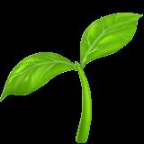 seedling-apple.png